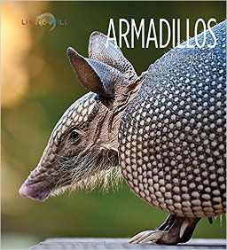 Images/Armadillo book